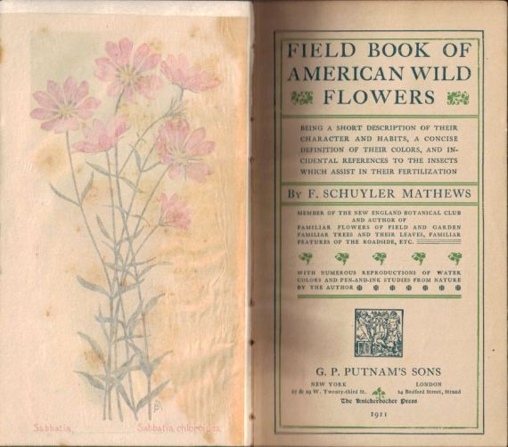 Fieldbook of the American Wildflowers title spread