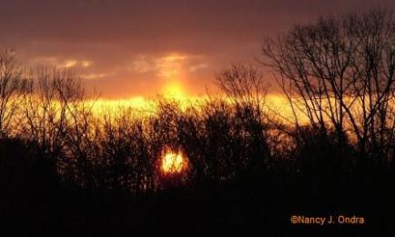 Saturday Sunrise closeup Feb 1608
