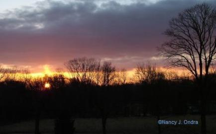 Saturday Sunrise Feb 1608