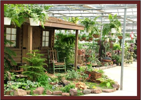 Black Creek greenhouse display