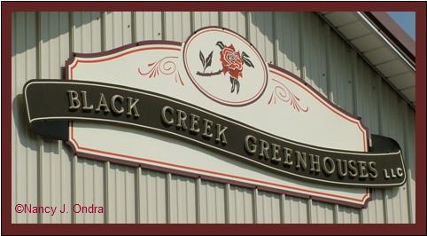 Black Creek Greenhouses