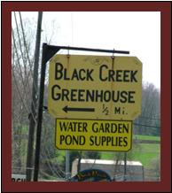 Black Creek sign