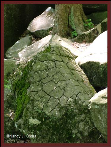 Boulder markings at Ringing Rocks May 8 08
