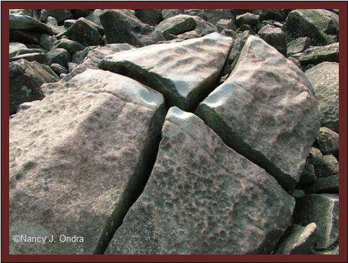 Cracked boulder at Ringing Rocks May 8 08