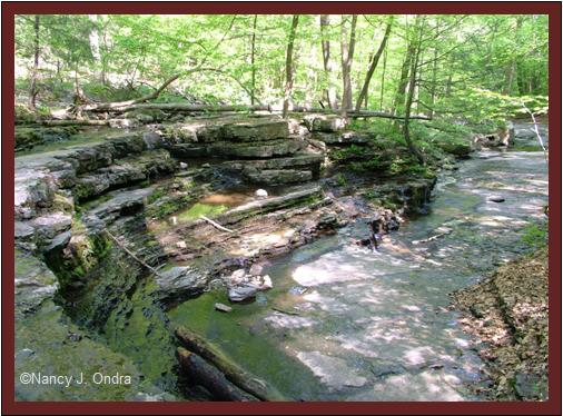 Rock layers at Ringing Rocks May 8 08