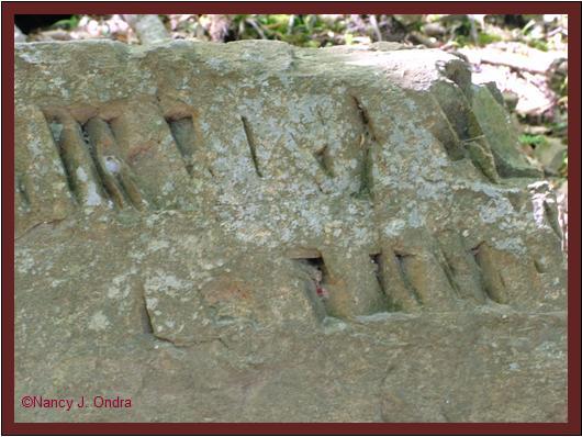 Rock markings at Ringing Rocks May 8 08