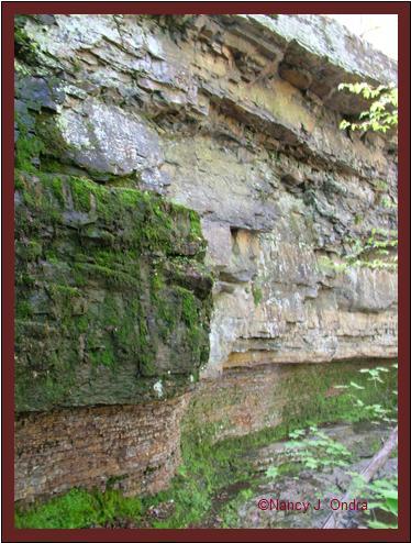 Rock strata at Ringing Rocks May 8 08