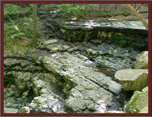 Streambed at Ringing Rocks May 8 08
