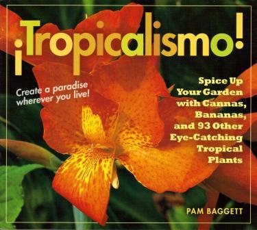 tropicalismo