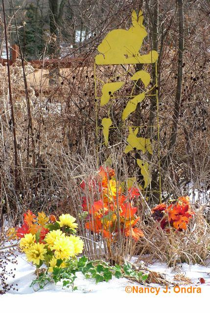 bloom-day-jan-09-6