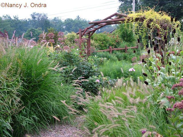Courtyard garden at Hayefield Aug 26 09