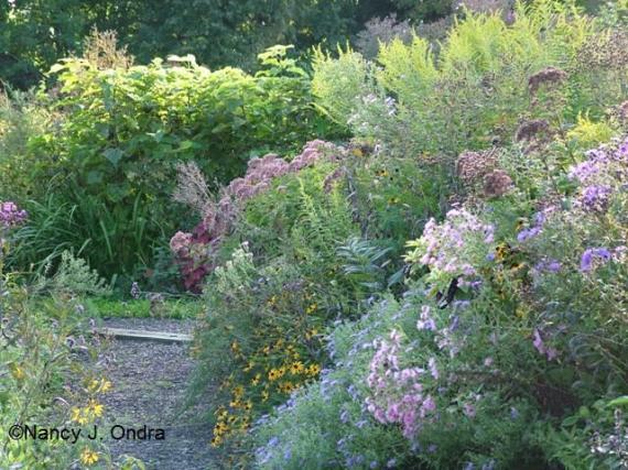 Sept 09 Side garden