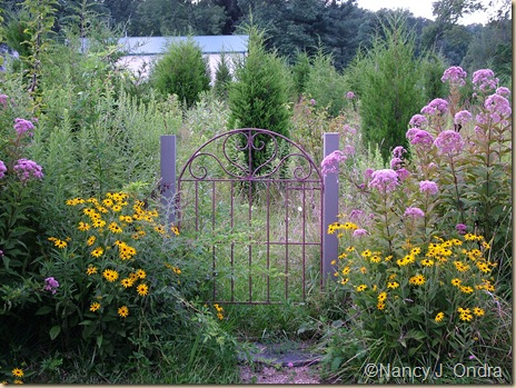 Gate into upper meadow Aug 12 08