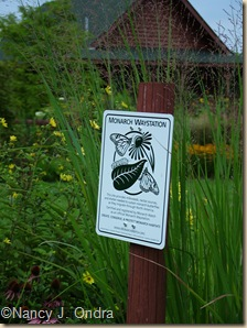Monarch Waystation sign in Long Border