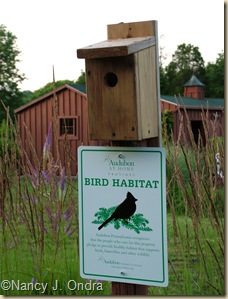 Audubon Backyard Habitat Recognition sign at Hayefield
