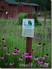 NWF Backyard Habitat sign July 4 07