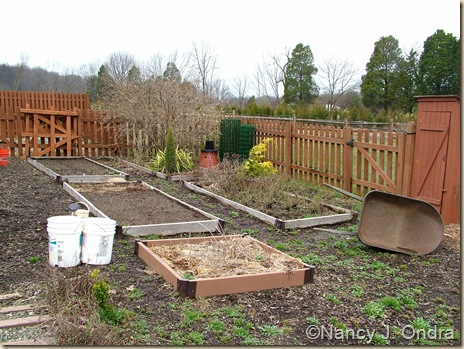 Future Happy Garden in March 2010