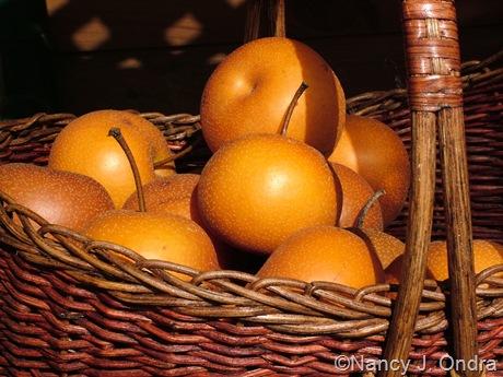 Asian pears Sept 14 10