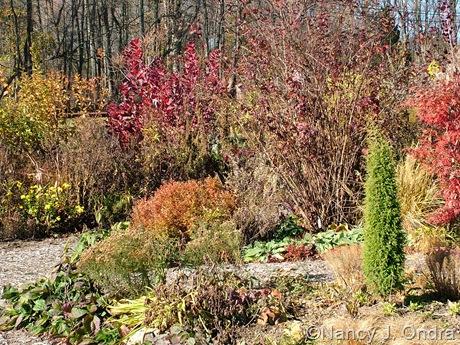 November at Hayefield
