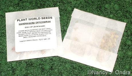 Glassine seed envelopes