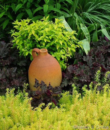 Sedum 'Angelina' with Heuchera 'Plum Pudding' and Caryopteris incana 'Jason'