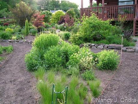 Side garden at Hayefield