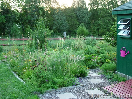 Perennial meadow in Cottage Garden at Hayefield Aug 13 11