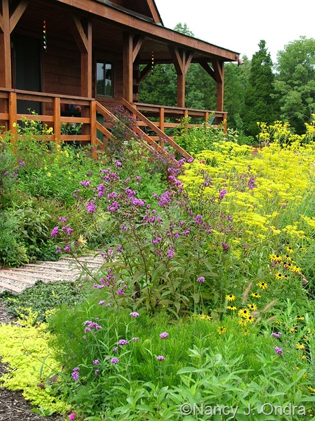 Side garden at Hayefield September 2011