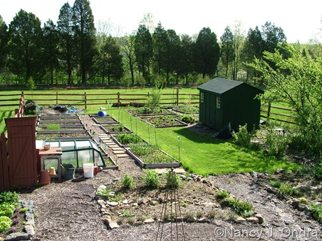 Cottage Garden at Hayefield April 30 11