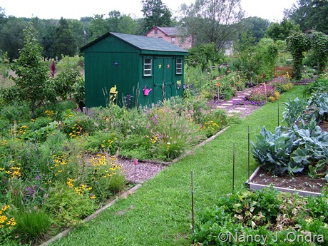 Cottage garden at Hayefield Aug 27 11