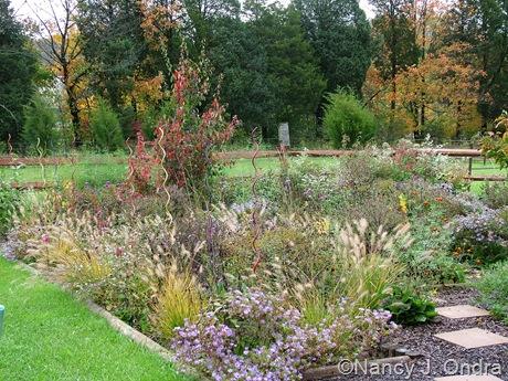 Perennial meadows at Hayefield October 2011