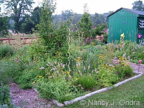 Perennial Meadow in The Cottage Garden at Hayefield 2011