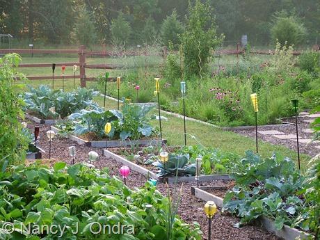 Glass in the veg garden at Hayefield