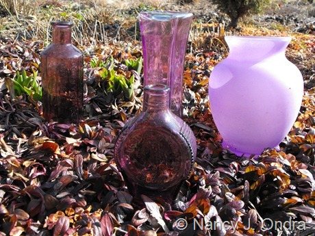 Purple glass at Hayefield