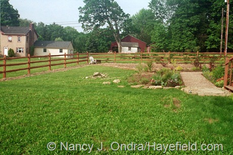 The Side Garden at Hayefield (June 2003)