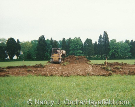 Hayefield (May 21, 2001): The beginning