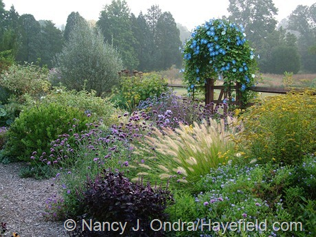 Side Garden at Hayefield (September 2007)