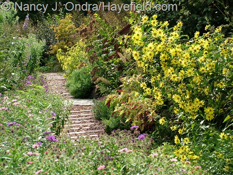 Side garden path at Hayefield