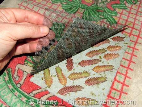 Handmade paper with Chasmanthium latifolium seedheads (removing the screening)