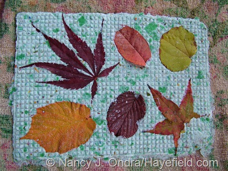 Handmade paper with fall leaves
