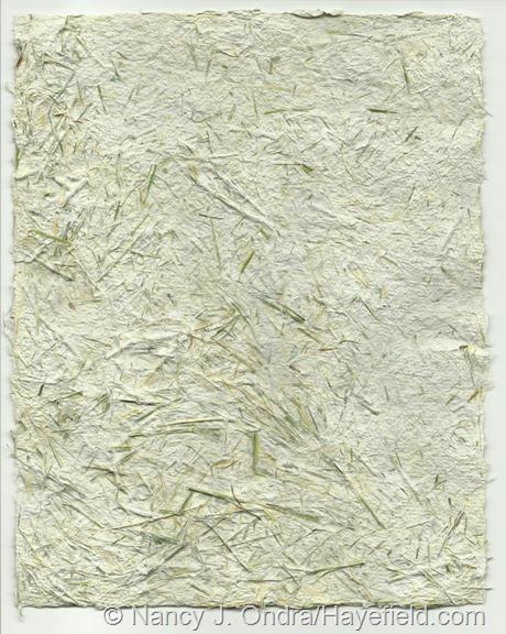 Paper pulp blended with Hakonechloa macra 'Aureola' foliage