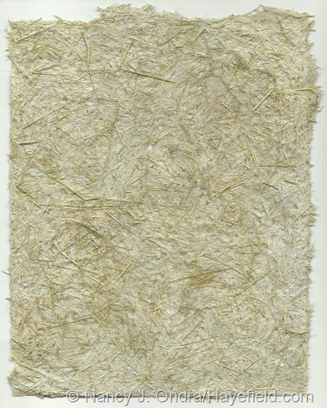 Paper pulp blended with Stipa tenuissima foliage