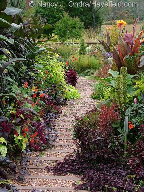 Front garden main path at Hayefield