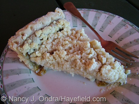 Ground cherry crumb pie