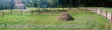 Front Garden Panorama at Hayefield 2002