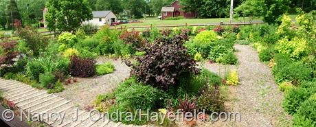Front Garden Panorama at Hayefield 2011