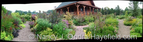 House Panorama early September 2012 at Hayefield from Photo Gallery uncropped