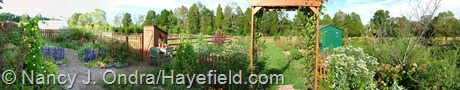 Happy Garden at Hayefield Panorama September 2012