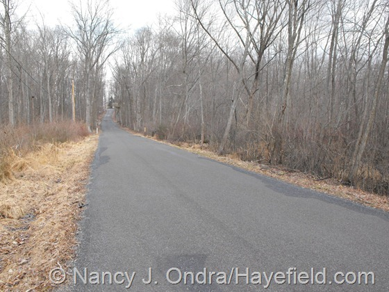 Fennel Road, Milford Township, PA