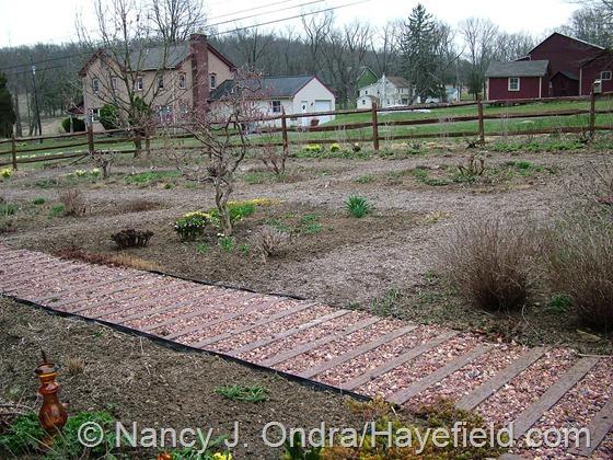 Front Garden at Hayefield